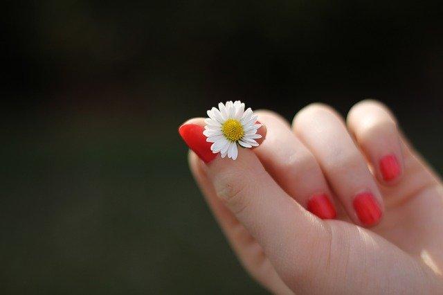 červené nehty a sedmikráska