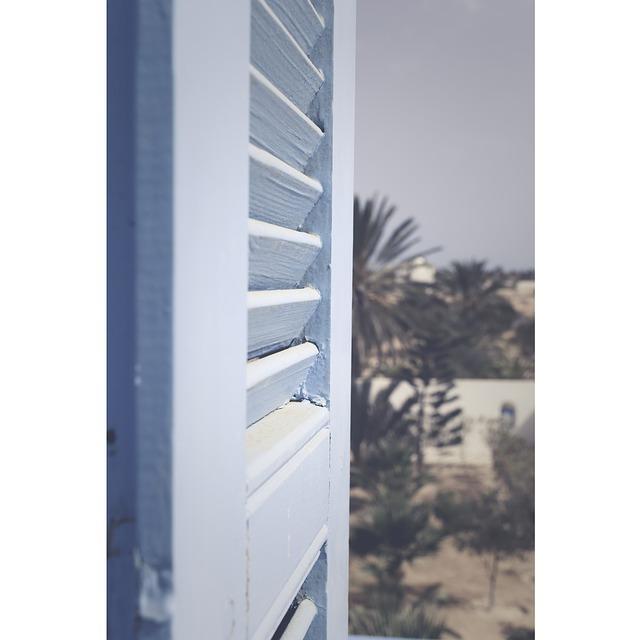palma, okenice