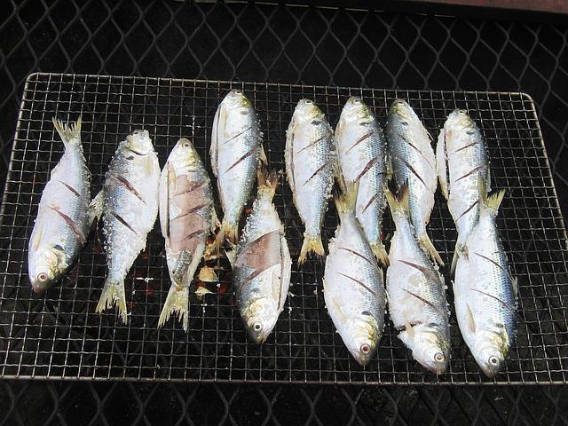 ryby na roštu